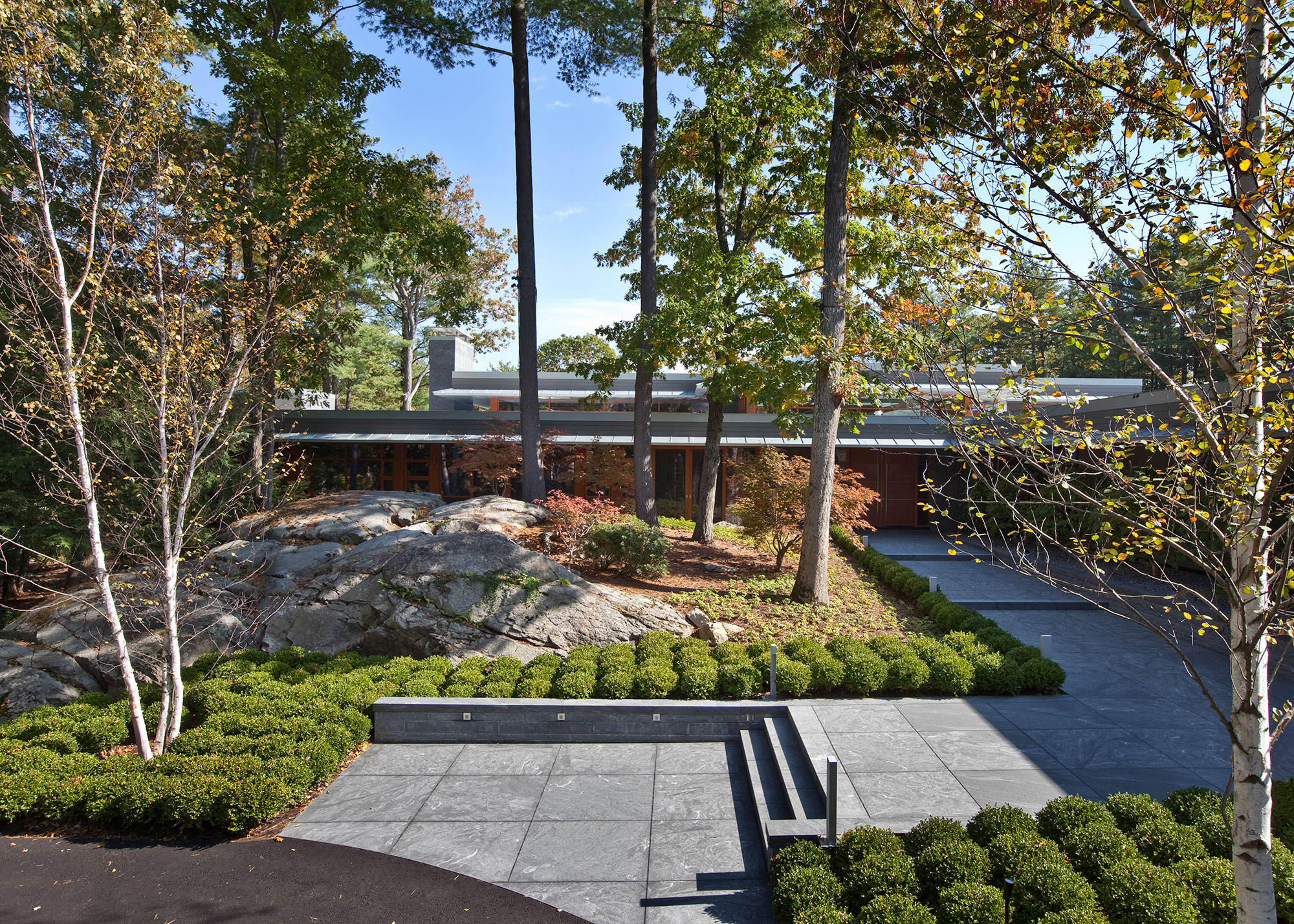 landscaped front entry terrace with ledge and birch trees