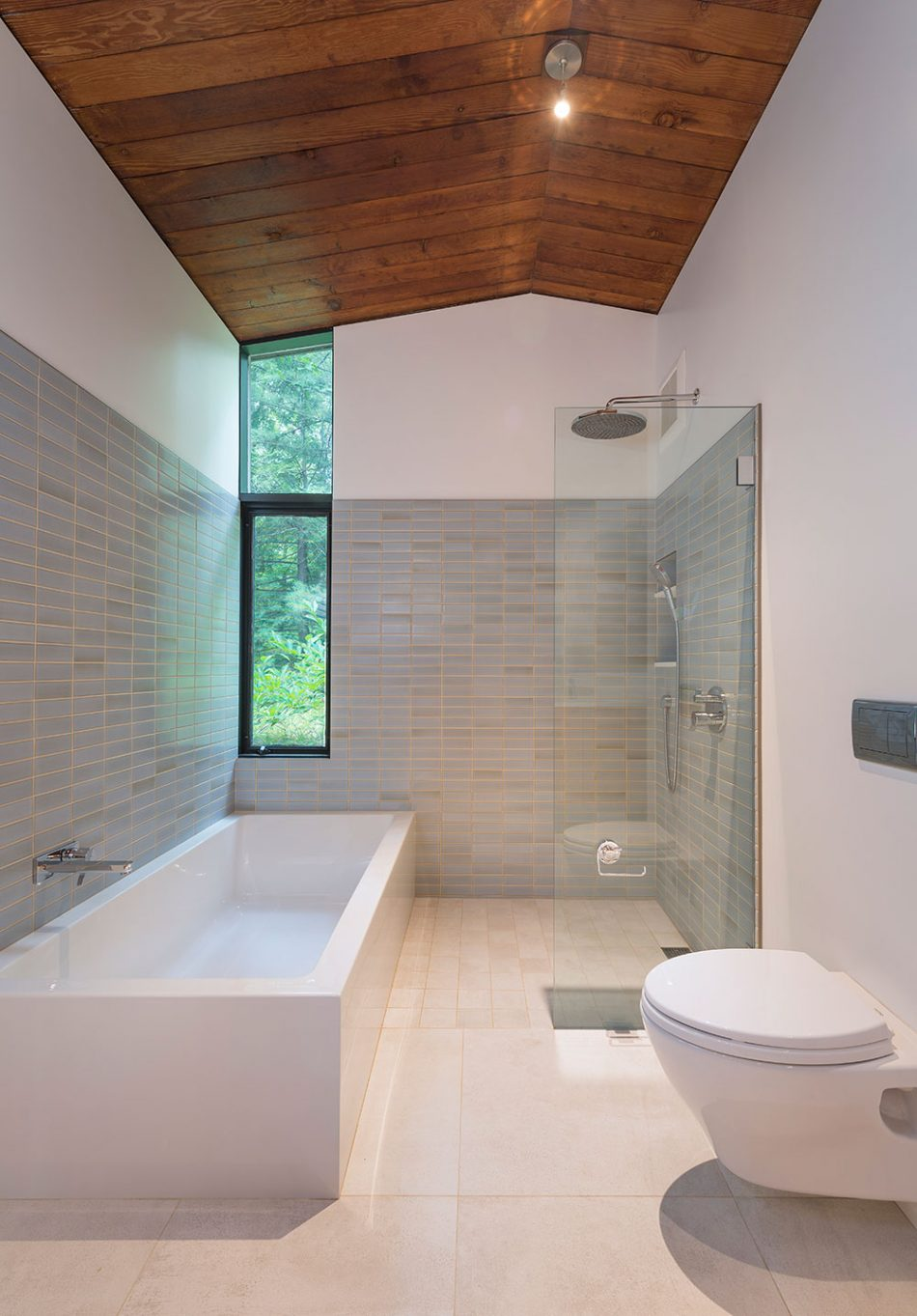 modern bathroom interior with wood ceiling